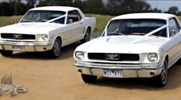 Mustang, Limousine Melbourne