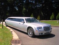 Silver Chrysler 10 passenger,